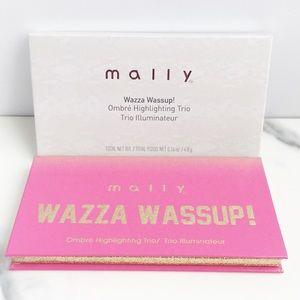 New Mally Wazza Wassup! Ombre Highlighting Trio